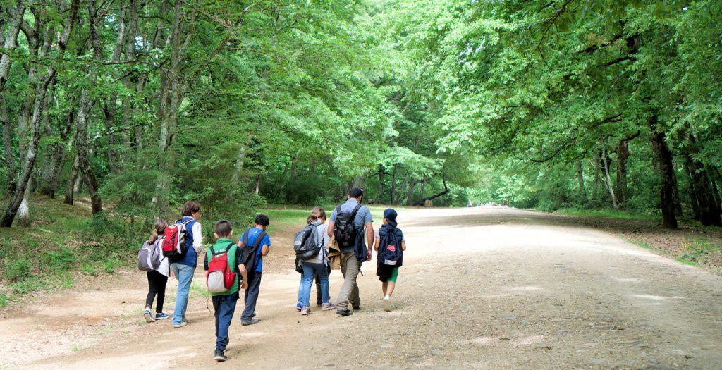 Escursioni organizzate da Cooperativa Climax