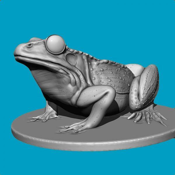Modellazione 3D con Climax